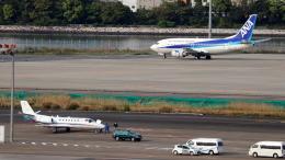 誘喜さんが、羽田空港で撮影した朝日新聞社 560 Citation Encoreの航空フォト(飛行機 写真・画像)