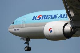 西麻布と焼売弁当さんが、成田国際空港で撮影した大韓航空 777-FEZの航空フォト(飛行機 写真・画像)