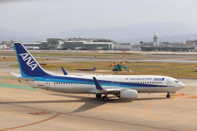 Yuseiさんが、福岡空港で撮影した全日空 737-881の航空フォト(飛行機 写真・画像)
