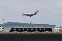 Mark-5さんが、松島基地で撮影した航空自衛隊 U-125 (BAe-125-800FI)の航空フォト(飛行機 写真・画像)
