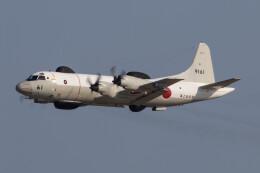 Koenig117さんが、岩国空港で撮影した海上自衛隊 UP-3Dの航空フォト(飛行機 写真・画像)