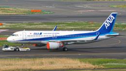 tkosadaさんが、羽田空港で撮影した全日空 A320-214の航空フォト(飛行機 写真・画像)