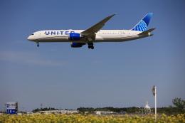 flyskyさんが、成田国際空港で撮影したユナイテッド航空 787-9の航空フォト(飛行機 写真・画像)