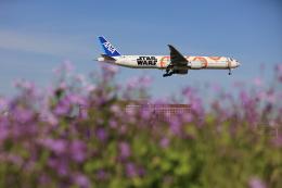 flyskyさんが、成田国際空港で撮影した全日空 777-381/ERの航空フォト(飛行機 写真・画像)