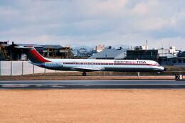パール大山さんが、伊丹空港で撮影した東亜国内航空 MD-81 (DC-9-81)の航空フォト(飛行機 写真・画像)