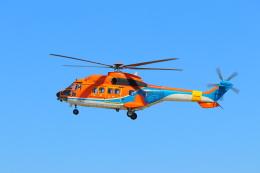 みのフォトグラファさんが、名古屋飛行場で撮影した新日本ヘリコプター AS332L1 Super Pumaの航空フォト(飛行機 写真・画像)