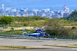 くれないさんが、高松空港で撮影した香川県警察 EC155B1の航空フォト(飛行機 写真・画像)