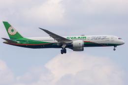 mameshibaさんが、成田国際空港で撮影したエバー航空 787-9の航空フォト(飛行機 写真・画像)