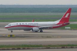 yabyanさんが、上海浦東国際空港で撮影した上海航空 737-86Dの航空フォト(飛行機 写真・画像)