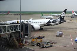 yabyanさんが、上海浦東国際空港で撮影したニュージーランド航空 787-9の航空フォト(飛行機 写真・画像)