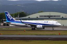 myoumyoさんが、熊本空港で撮影した全日空 A320-271Nの航空フォト(飛行機 写真・画像)
