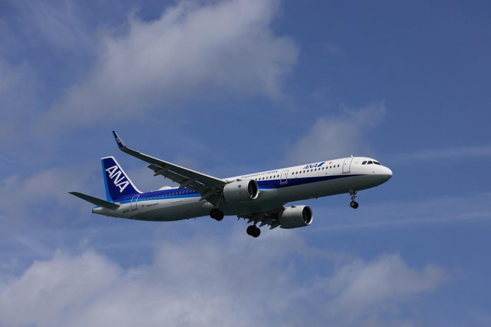 julyさんの全日空 Airbus A321neo (JA150A) 航空フォト