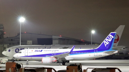 誘喜さんが、羽田空港で撮影した全日空 A320-214の航空フォト(飛行機 写真・画像)
