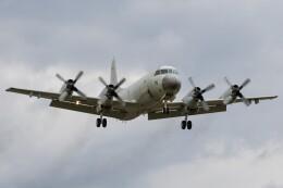 walker2000さんが、下総航空基地で撮影した海上自衛隊 P-3Cの航空フォト(飛行機 写真・画像)