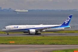 Flying A340さんが、羽田空港で撮影した全日空 787-9の航空フォト(飛行機 写真・画像)