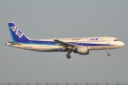 Flying A340さんが、羽田空港で撮影した全日空 A320-211の航空フォト(飛行機 写真・画像)