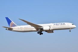 PIRORINGさんが、成田国際空港で撮影したユナイテッド航空 787-9の航空フォト(飛行機 写真・画像)