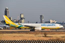 PIRORINGさんが、成田国際空港で撮影したセブパシフィック航空 A330-343Xの航空フォト(飛行機 写真・画像)