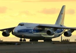 LOTUSさんが、関西国際空港で撮影したヴォルガ・ドニエプル航空 An-124-100 Ruslanの航空フォト(飛行機 写真・画像)
