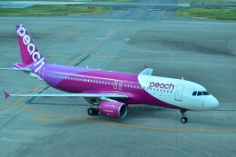 ER_b777logさんが、那覇空港で撮影したピーチ A320-214の航空フォト(飛行機 写真・画像)