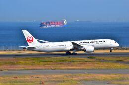 ER_b777logさんが、羽田空港で撮影した日本航空 787-9の航空フォト(飛行機 写真・画像)
