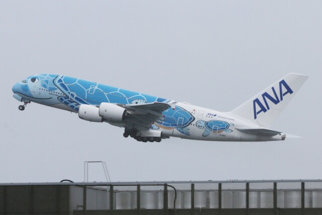 青春の1ページさんが、関西国際空港で撮影した全日空 A380-841の航空フォト(飛行機 写真・画像)