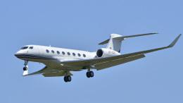 パンダさんが、成田国際空港で撮影したカタール・エグゼクティブ G650 (G-VI)の航空フォト(飛行機 写真・画像)