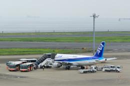 inyoさんが、羽田空港で撮影した全日空 A320-211の航空フォト(飛行機 写真・画像)