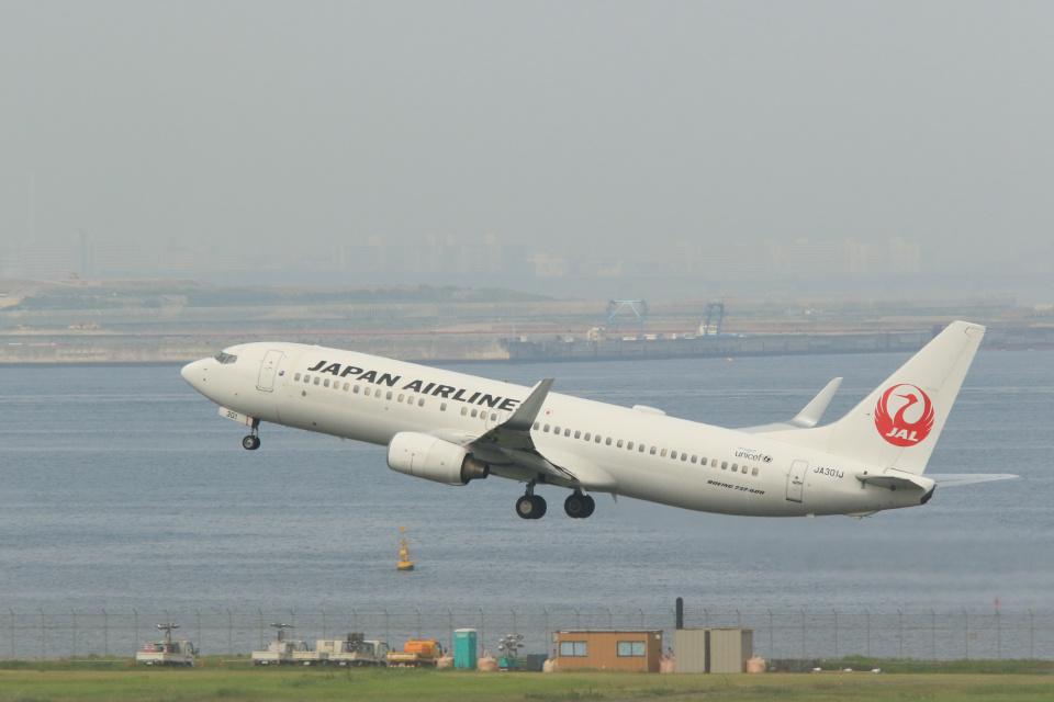 inyoさんの日本航空 Boeing 737-800 (JA301J) 航空フォト
