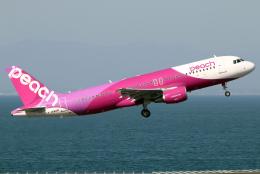 航空フォト:JA821P ピーチ A320