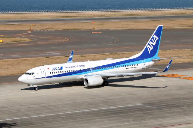 航空フォト:JA87AN 全日空
