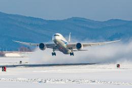 KAMIYA JASDFさんが、函館空港で撮影した全日空 787-8 Dreamlinerの航空フォト(飛行機 写真・画像)
