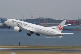 プルシアンブルーさんが、羽田空港で撮影した日本航空 787-9の航空フォト(飛行機 写真・画像)