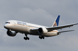 panchiさんが、成田国際空港で撮影したユナイテッド航空 787-9の航空フォト(飛行機 写真・画像)