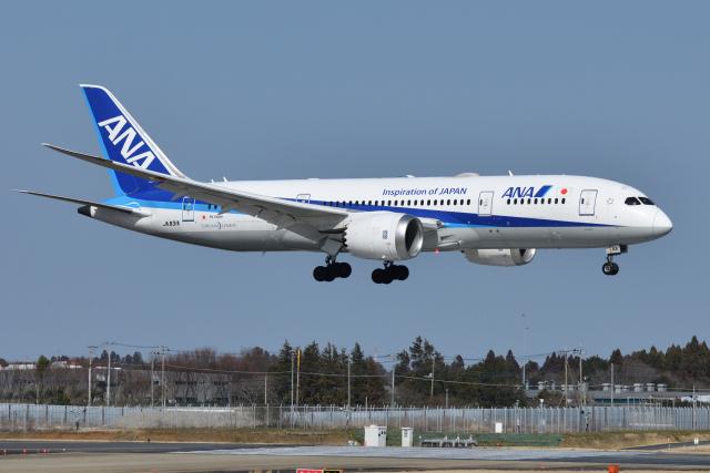 saoya_saodakeさんが、成田国際空港で撮影した全日空 787-8 Dreamlinerの航空フォト(飛行機 写真・画像)