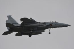 LEGACY-747さんが、千歳基地で撮影した航空自衛隊 F-15J Eagleの航空フォト(飛行機 写真・画像)