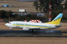 NIKEさんが、仙台空港で撮影したAIR DO 737-54Kの航空フォト(飛行機 写真・画像)