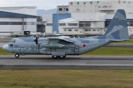 sky77さんが、伊丹空港で撮影した航空自衛隊 C-130H Herculesの航空フォト(飛行機 写真・画像)