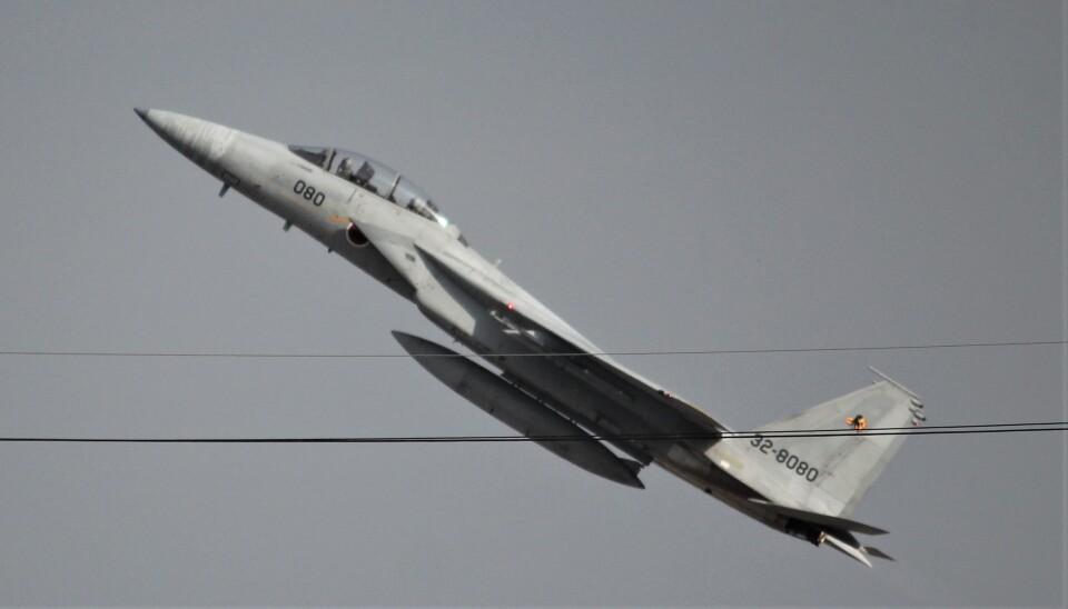 こびとさんさんの航空自衛隊 Mitsubishi F-15DJ Eagle (32-8080) 航空フォト