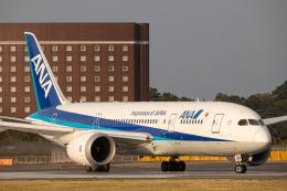 SGR RT 改さんが、成田国際空港で撮影した全日空 787-8 Dreamlinerの航空フォト(飛行機 写真・画像)