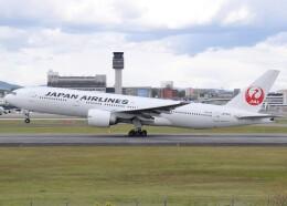 Soutaさんが、伊丹空港で撮影した日本航空 777-246/ERの航空フォト(飛行機 写真・画像)