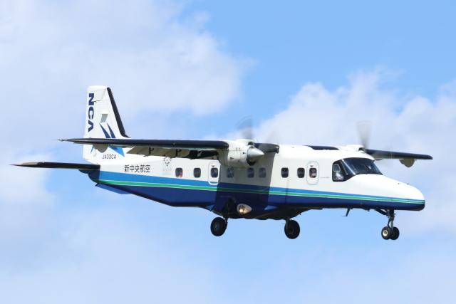 mogusaenさんが、調布飛行場で撮影した新中央航空 228-212の航空フォト(飛行機 写真・画像)