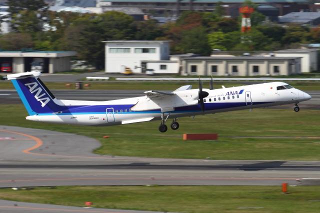 B14A3062Kさんが、伊丹空港で撮影したANAウイングス DHC-8-402Q Dash 8の航空フォト(飛行機 写真・画像)