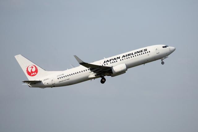 徳兵衛さんが、伊丹空港で撮影した日本航空 737-846の航空フォト(飛行機 写真・画像)