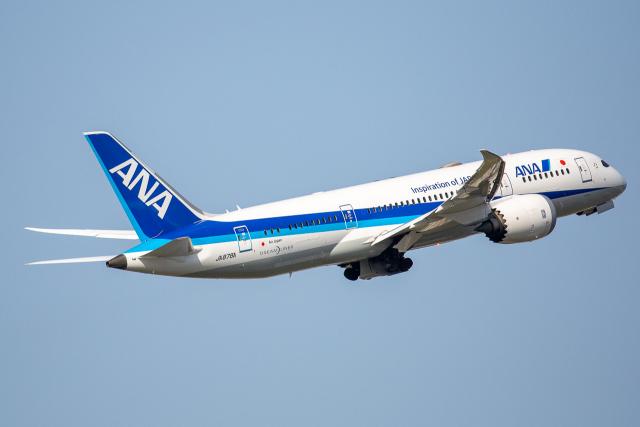 徳兵衛さんが、伊丹空港で撮影した全日空 787-8 Dreamlinerの航空フォト(飛行機 写真・画像)