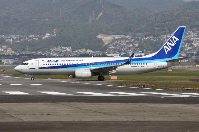 sumihan_2010さんが、伊丹空港で撮影した全日空 737-8ALの航空フォト(飛行機 写真・画像)