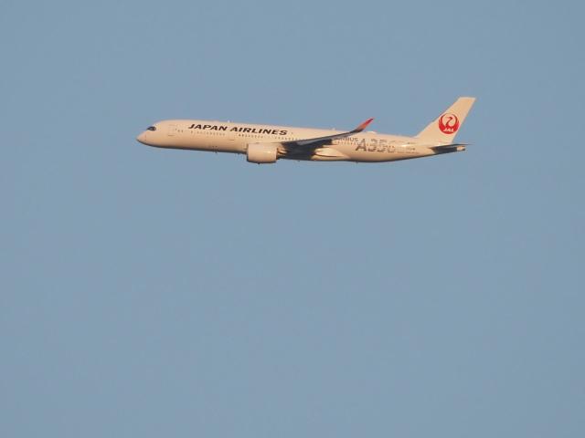 gennai04さんが、羽田空港で撮影した日本航空 A350-941の航空フォト(飛行機 写真・画像)