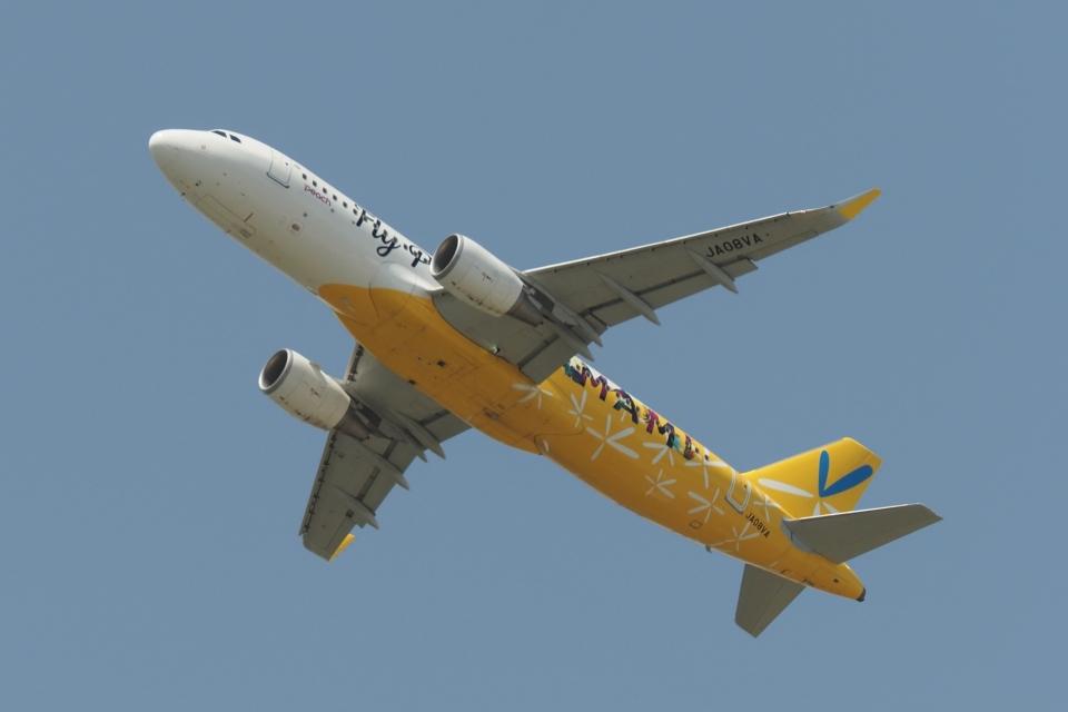 木人さんのピーチ Airbus A320 (JA08VA) 航空フォト