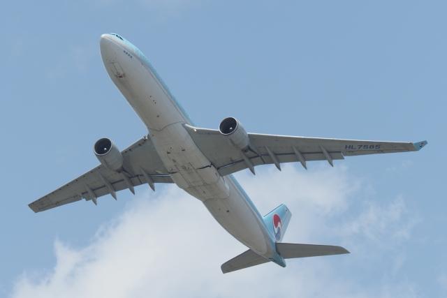 木人さんが、成田国際空港で撮影した大韓航空 A330-323Xの航空フォト(飛行機 写真・画像)