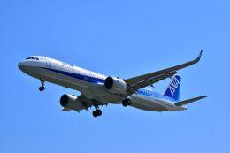 航空フォト:JA137A 全日空 A321neo